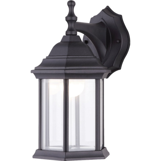 Canarm Black LED Outdoor Wall Fixture